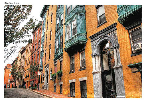 Myrtle Street, Beacon Hill Postcard
